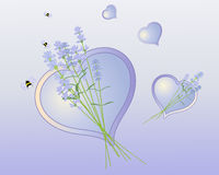 Lavender heart Stock Images