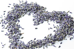Lavender Heart Royalty Free Stock Photos