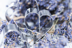 Lavender and Heart Shapes Stock Image