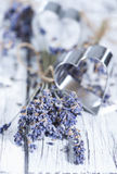 Lavender and Heart Shapes Royalty Free Stock Images