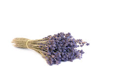 Lavender Herb Dried Flowers. Lavender herb flowers dried in a bunch, over white background Royalty Free Stock Photography