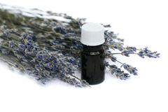 Lavender herb and essential oil Stock Photography