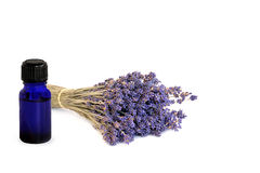 Lavender Herb Essential Oil. Dried lavender herb tied  in a bunch with a blue essential oil glass bottle, over white background Stock Images
