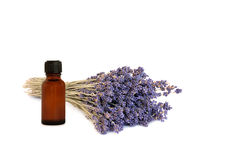 Lavender Herb Essential Oil Royalty Free Stock Photo