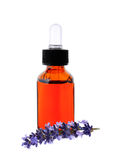Lavender herb flower leaf sprigs with essential oil bottle Royalty Free Stock Photo