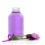 Lavender Herb Flower Water Stock Photos