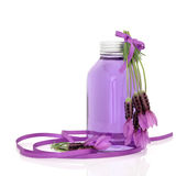 Lavender Herb Flower Water Stock Photo