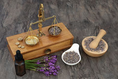 Lavender Herb Flowers. Used in natural alternative medicine with old brass scales, aromatherapy essential oil bottle and mortar with pestle royalty free stock image