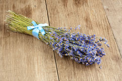 Lavender herb set Stock Photography
