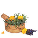 Lavender Herb and Viola Flowers. Lavender herb leaf and flower sprigs and viola flowers with an olive wood mortar with pestle, over white background Stock Photography