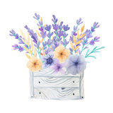Lavender and herbs in wooden box. Hand painted watercolor lavender flowers and provence herbs in gray wooden crate. Rustic floral wooden box perfect for wedding Stock Images