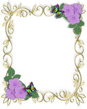 Lavender Hibiscus Flowers Frame. Image and illustration Composition for Card, invitation, stationery, page, background or border of Lavender  flowers and Stock Photos