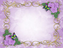 Lavender Hibiscus Flowers Frame Royalty Free Stock Photos