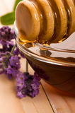 Lavender honey with fresh flowers. sweet food Royalty Free Stock Image