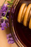 Lavender honey with fresh flowers. sweet food Royalty Free Stock Photos