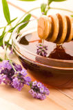 Lavender honey with fresh flowers. sweet food Stock Images