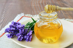 Lavender honey Stock Images
