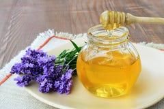 Lavender honey Stock Images