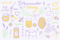 Lavender honey set. Hand-drawn cartoon collection - flowers, jars, calligraphy, floral elements. Doodle drawing. Lavender honey set. Hand-drawn cartoon vector illustration