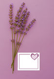 Lavender invitation vertical, heart Stock Images