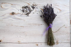 Lavender lavender background. Classical plant - the purple wonder Stock Image