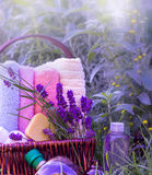 Lavender and lavender oil Stock Image