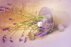 Lavender and lavender oil Stock Photography