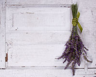 Lavender laying on an old door panel Stock Photography