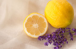 Lavender and lemon aromatherapy Royalty Free Stock Photos