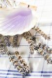 Lavender massage oil Stock Photography