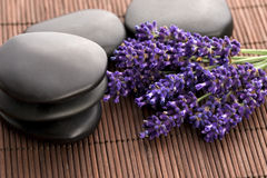 Lavender and massage stones Royalty Free Stock Images