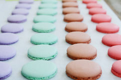 Lavender, mint, caramel and pink macaroon cups over baking paper Royalty Free Stock Photos