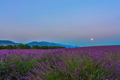 Lavender Moon II. A special landscape photo in Provence, France, with a lavender field, mountains, full moon and dreamy blue blue sky Stock Photography