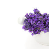 Lavender in a mortar Royalty Free Stock Image