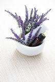 Lavender and mortar and pestle Stock Photography