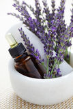 Lavender and mortar and pestle Stock Images