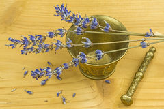 Lavender with mortar Royalty Free Stock Photography