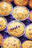 Lavender muffins Stock Photography