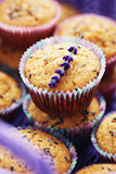 Lavender muffins Royalty Free Stock Image