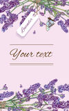 Lavender natural cosmetics banner. Lavender natural cosmetics vertical banner on lilac background. Design for cosmetics, make up, store, beauty salon, natural Stock Photo