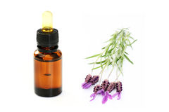 Lavender Oil Stock Photography
