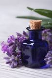 Lavender oil in a blue bottle vertical macro Stock Images