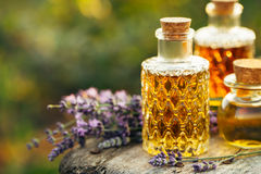 Lavender oil in bottles and fresh lavender. stock photography