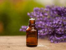 Lavender oil container Royalty Free Stock Image