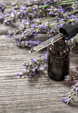 Lavender oil essence dreied flowers wooden background Royalty Free Stock Photography