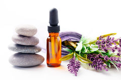 Lavender oil and flowers.  Stock Photography