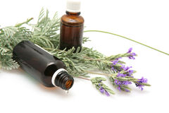 Lavender oil and flowers on white background Stock Photos