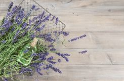 Lavender oil fresh flowers rustic wooden background. Lavender oil with fresh flowers on rustic wooden background Stock Photos