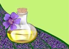 Lavender oil Royalty Free Stock Photography