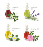 Essential oils. A Vector essential oils set Stock Images